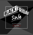 black friday sales background banner or poster vector image vector image
