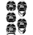 black scary human skull with canine tattoo set vector image vector image