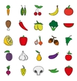 Food Icon set Color vegetables and meat vector image vector image