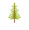 larch tree icon flat style vector image vector image