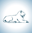 Lion drawing vector image vector image