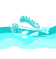 marine template nature seafish vector image