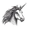unicorn sketch mystic magic horse vector image vector image