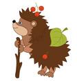 cartoon hedgehog with leaves and berries vector image