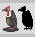 griffon vulture cartoon character with its vector image