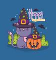 halloween cat cartoons vector image vector image