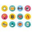 icons in flat style healthy sport and vector image