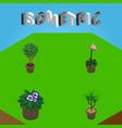 isometric houseplant set of grower tree vector image vector image