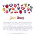 Juice Berry flayer