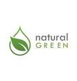 natural green leaf logo vector image vector image