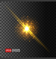 star light flash lens flare effect icon vector image vector image