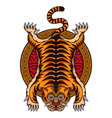 traditional tiger skin tattoo vector image vector image