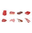 different meat icons in set collection for design vector image