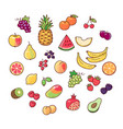 collection fruits vector image vector image