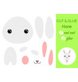 cut and glue baby hare education developing