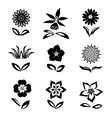 Flower icons set Chamomile daisy orchid cloves vector image vector image