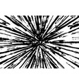grunge black texture in ray shape on white vector image vector image