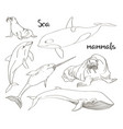 sea mammals animal collection icons set vector image