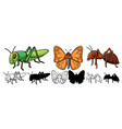 set insect cartoon vector image vector image