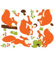 set of cute cartoon squirrels vector image