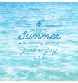 summer is coming text vector image