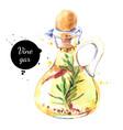 watercolor hand drawn vinegar bottle painted vector image vector image