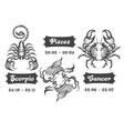 zodiac signs of scorpion fishes and cancer vector image vector image