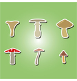 color icons with mushrooms vector image