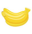 bananas cartoon vector image vector image
