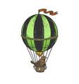 bird on vintage air balloon sketch vector image vector image