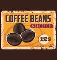 coffee roasted beans rusty plate vector image vector image