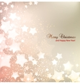 Elegant Christmas background with stars and place vector image vector image