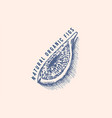 fresh fig badge dried fruit foliage label or logo vector image vector image