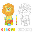 funny lion sitting in a circus arena coloring vector image vector image