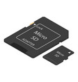 micro sd flash icon isometric style vector image vector image
