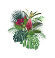 tropical flowers palm monstera leaves vector image