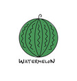 watermelon sketch for your design vector image