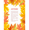 autumn background with frame made leaves vector image vector image