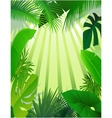 Nature forest background vector | Price: 1 Credit (USD $1)