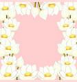 white indian lotus border vector image
