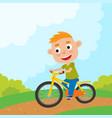 cartoon boy riding a bike having fun riding vector image