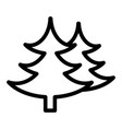 fir tree line icon spruce vector image