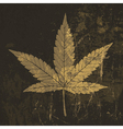 grunge cannabis leaf symbol vector image vector image