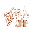 hand drawn set with wine and grapes vector image vector image