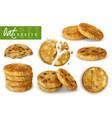 oat cookies realistic set vector image vector image