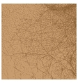 Perfect brown leather texture isolated vector image vector image