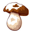 porcini edible fresh mushroom icon healthy vector image vector image