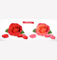 rose flower 3d realistic icon vector image