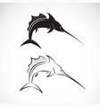 sailfish design on white background sea animal vector image vector image
