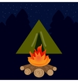 The camp campfire at night vector image vector image